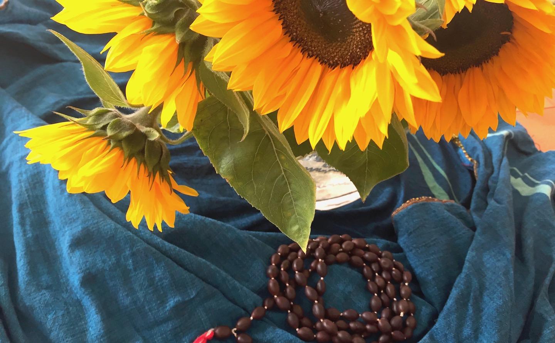 Zen Meditation und Vortrag mit Sara Kokyo Wildi - Donnerstag, 12. März 2020